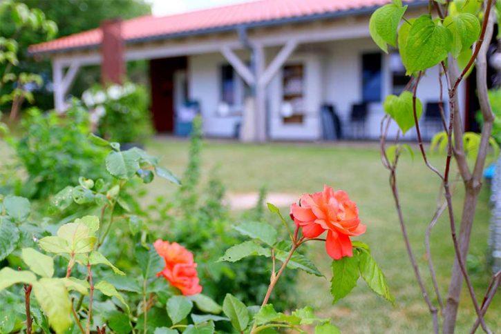Terrasse und Garten des Ferienhaus