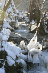 Brühlbach im Winter 2009