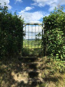 Am Weinberg im Metzingen