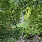 Wandern - Natur - Schwäbische Alb - 14
