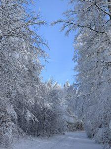 Pflegeurlaub - Winterlandschaft auf der Schwäbischen Alb